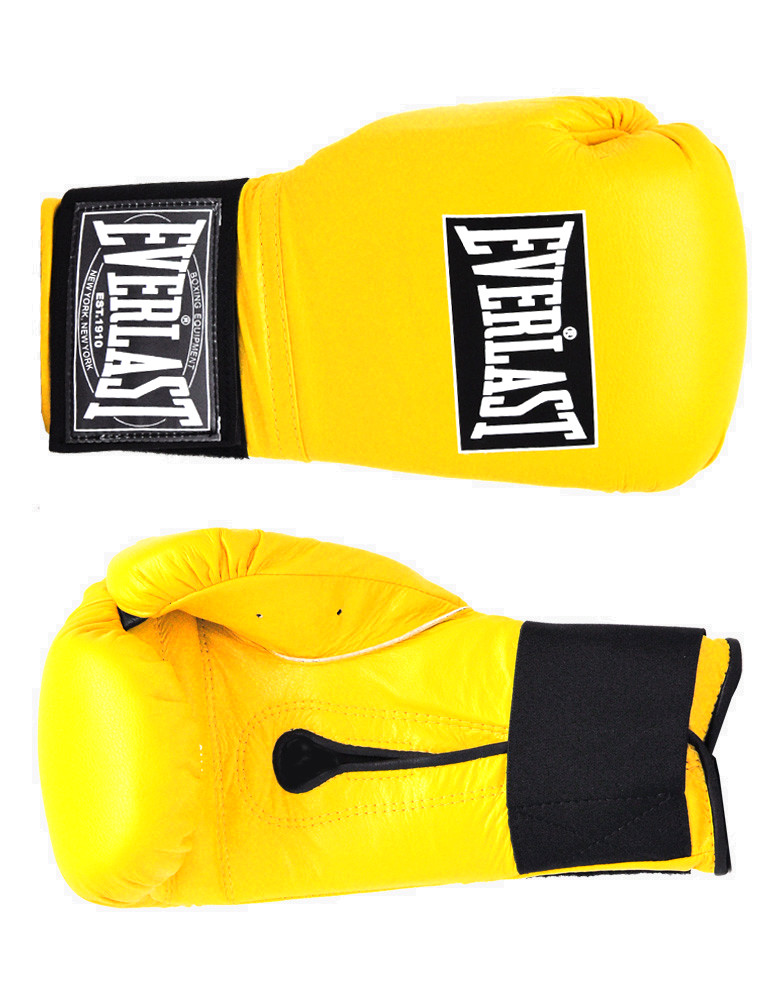Shiv Naresh Teens Boxing Gloves 12oz: Professional Training Gloves By EVERLAST BOXING (colour