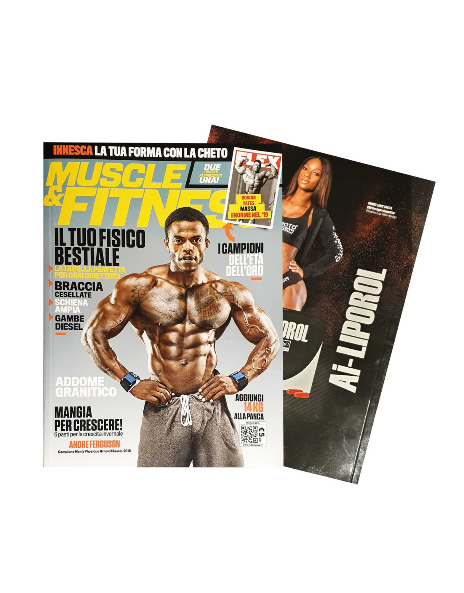 MUSCLE & FITNESS by Muscle & fitness - iafstore com