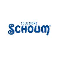 SOLUZIONE SCHOUM logo