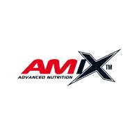 AMIX logo