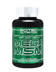 Mega MSM 100 capsules