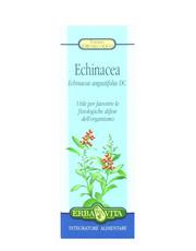 Estratto Idroalcolico - Echinacea 50ml