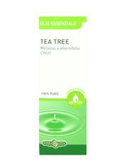 Olio Essenziale - Tea Tree 10ml